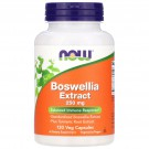 Boswellia Extract 250 mg (120 Veg Caps) - Now Foods