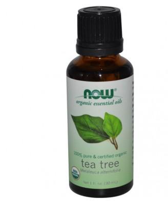 Organic Essential Oils - Tea Tree (30 ml) - Now Foods