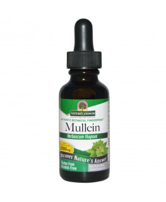 Mullein, Alcohol-Free, 2000 mg (30 ml) – Nature's Answer