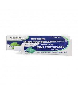 Dr. Mercola, natürliche Mint Zahnpasta mit Tulsi, Fluorid-frei, 6oz (170 g)