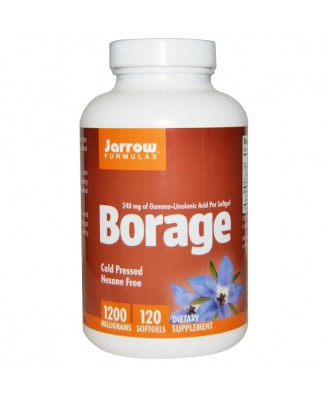 Borage GLA-240 1200 mg (120 softgels) - Jarrow Formulas