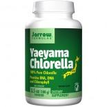 Yaeyama Chlorella Powder (100 gram) - Jarrow Formulas