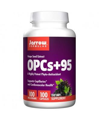 OPCs + 95 Grape Seed Extract 100 mg (100 Capsules) - Jarrow Formulas