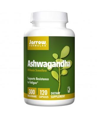 Jarrow Formulas, Ashwagandha, 300 mg, 120 Veggie Caps