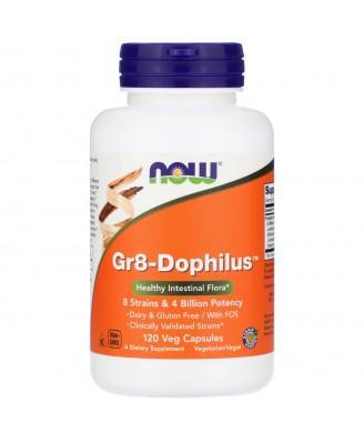 Gr8-Dophilus (120 Vegetarian Capsules) - Now Foods