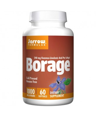 Borage GLA-240 1000 mg (60 softgels) - Jarrow Formulas