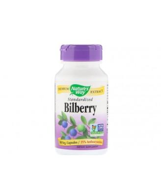 Bilberry Standardized (90 Veg Capsules) - Nature's Way